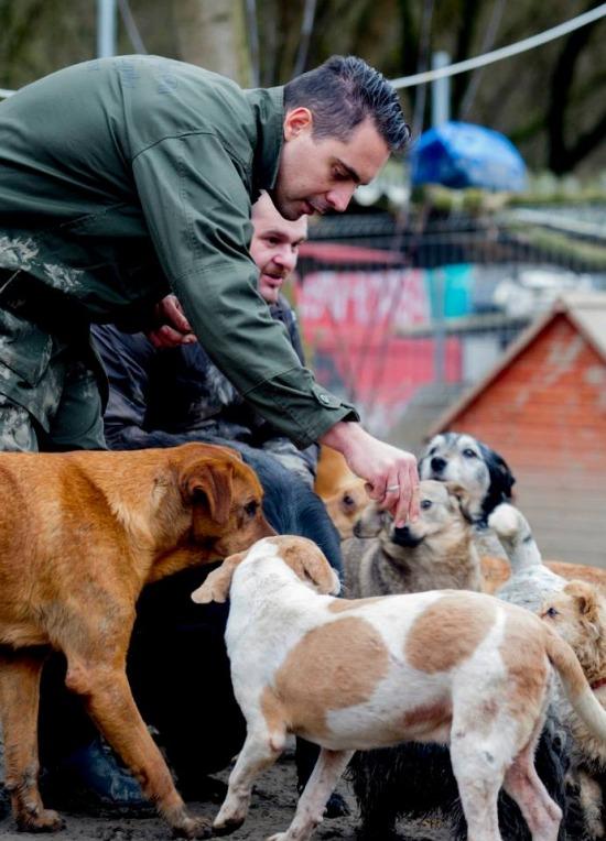 Vona Gábor rengeteg kutyával