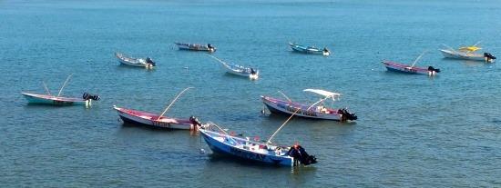 A halászat a múlté. A csónakok inkább turistákat furikáznak.