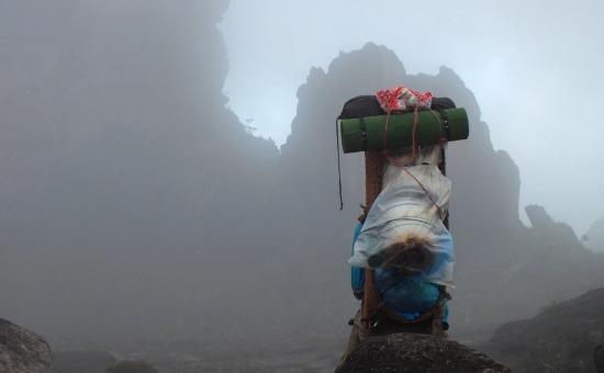 Teherhordó a ködös Roraimán