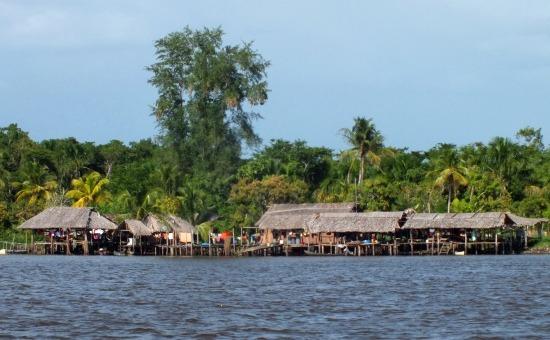 Saragai warao faluja