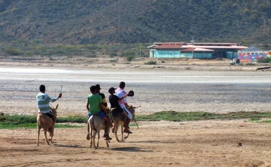 Az Araya-félszigeten még nem ritka a szamárháton közlekedés