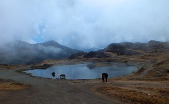 A Pico El Águila csúcsa latt található apró lagúna lóitatóként szolgál