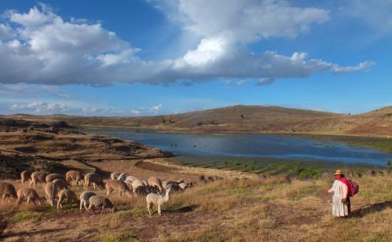 Peru Titicaca-tó Altiplano
