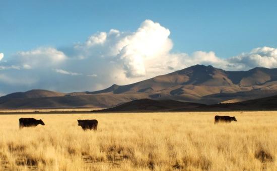 Mert az Altiplano szép