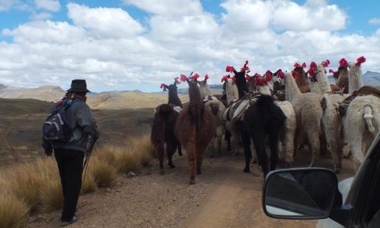 Klasszikus kép az Andok mélyéről