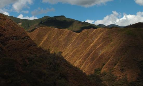Dél-Ecuadorban a legnagyobb gondot az erdőirtás jelenti