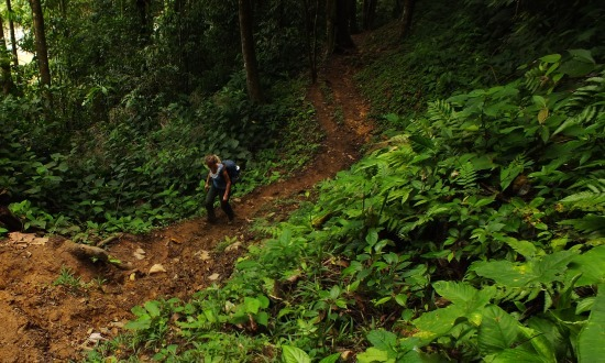 Eri küzd a Kapisunba tartó ösvénnyel