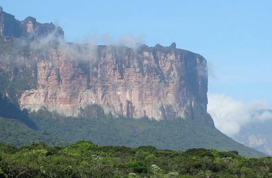 A tepuik sziklafalai több száz méterrel emelkednek a természet fölé