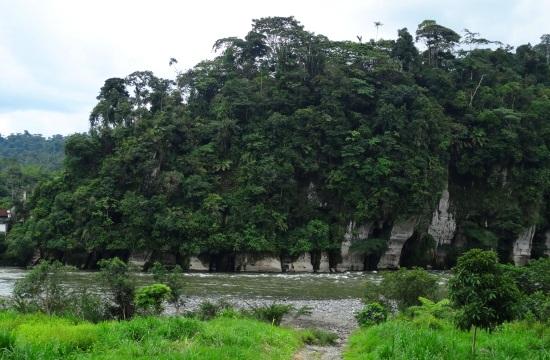 Chiguaza labirintusait a Rio Pastaza faragta ki