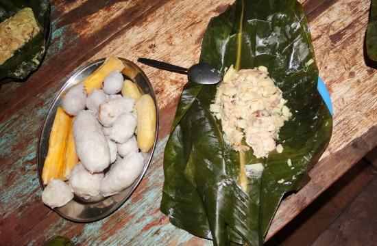 A legfinomabb shuar étel: hal pálmatörzzsel