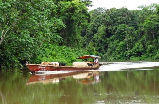 Tehénszállítás a Kashpaim-folyón