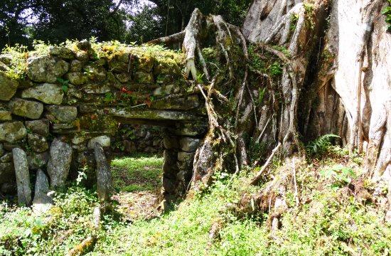 Vilcabambát benőtte az erdő