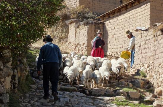 Dugó van Challa főutcáján
