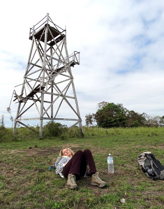 A toronyba persze nem lehet felmenni