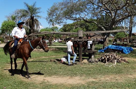 Chiquitanai életkép
