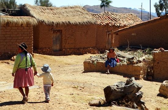 Egy tanyabokor Sucre és Potosí között - miattuk létezik a buscarril