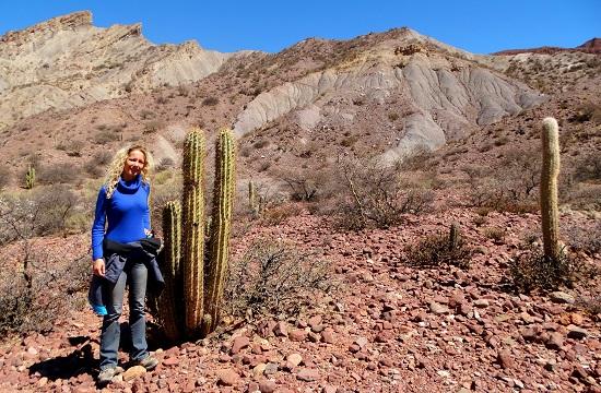 Kaktusz, kaktusz mindenhol