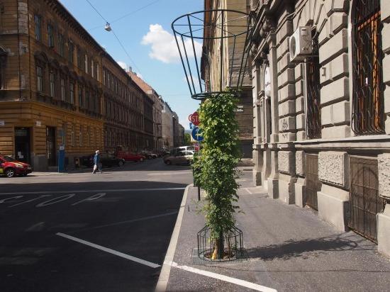 növénykandeláber