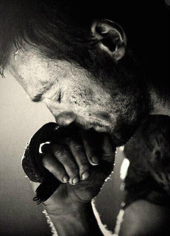 book Szexpázsit Milán éjszaka bor Szeréna ölelés sírás könny kocsikázás
