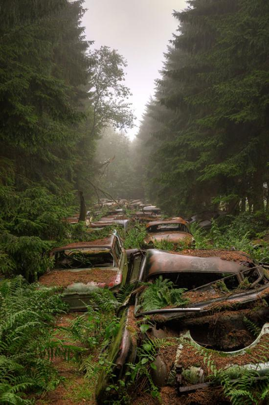 A világ érdekes rejtély misztikus autótemető Belgium Saint-Léger Chantillon Chatillon autó temető erdő roncs amerikai katona