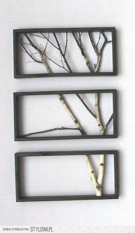 Tree-Branch-23.jpg