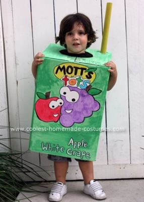 coolest-juice-box-costume-6-21139223.jpg