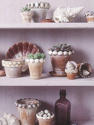 shell planters.jpg
