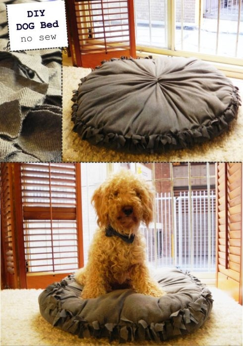 diy-dog-bed1.jpg
