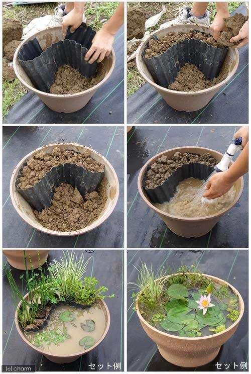 csináld_magad diy kert