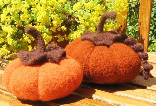 pumpkinsBEAUTY.jpg