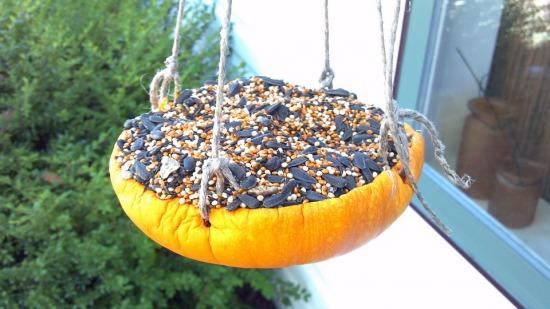 2011-PumpkinBirdfeeder.jpg