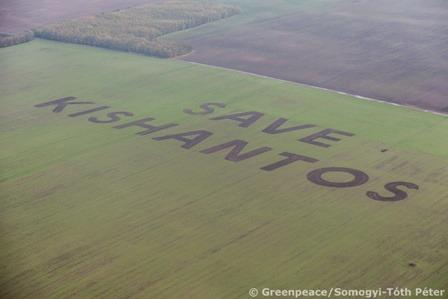Save_Kishantos_copyright_Somogyi-Toth_Peter_Greenpeace_2.jpg