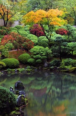 japánkert.jpg