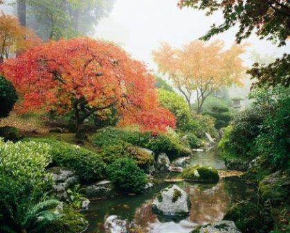 Japanese-Garden-3.jpg