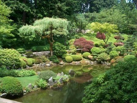japan_kert_9_500515_17477.jpg