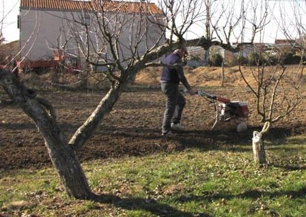 A kertásásban nagy segítség a motoros kapa.jpg