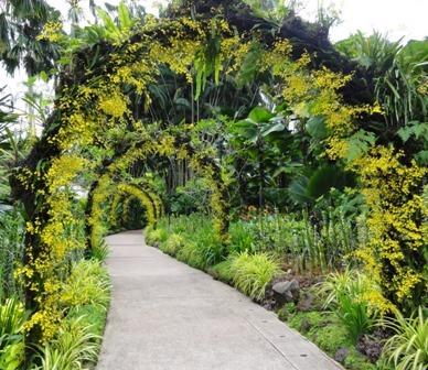 Virágkapu a Szingapúri orchidea parkban.jpg