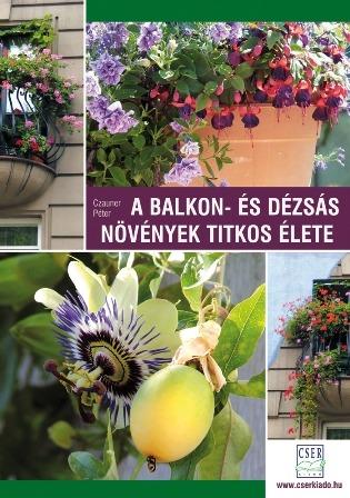 balkon- es dezsas másolata.jpg