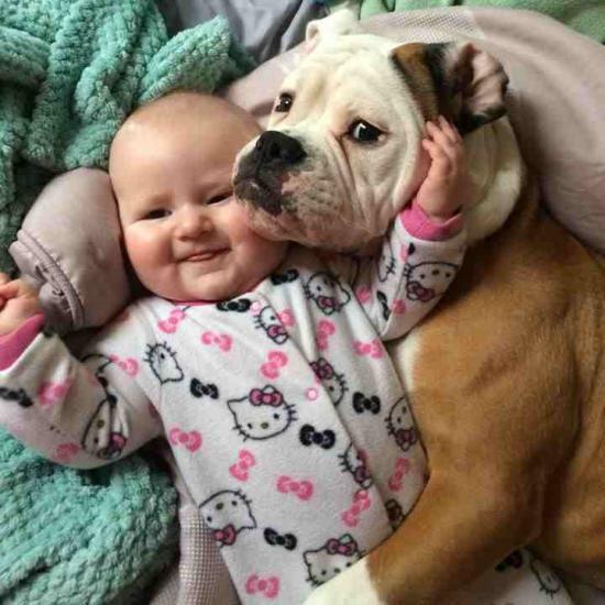 kis gyerek nagy kutya