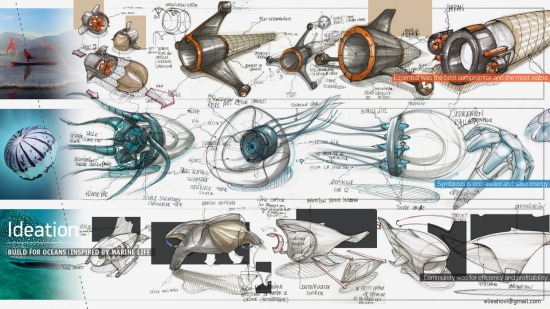 Marine Drone Planning