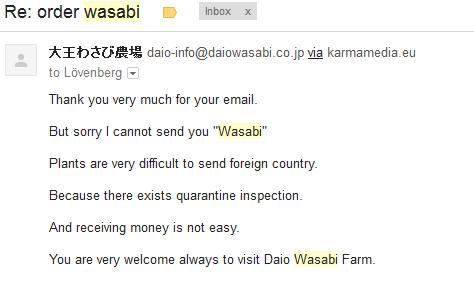 wasabi jappán.PNG